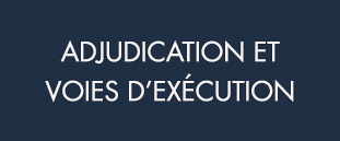 ADJUDICATION_VOIES-D'EXECUTION_Bleu